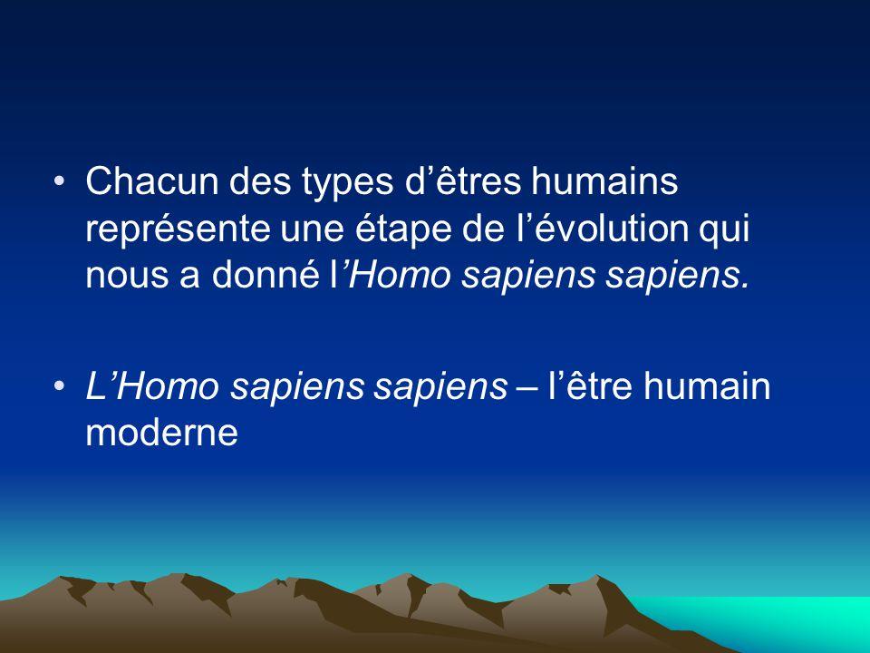 Chacun des types dêtres humains représente une étape de lévolution qui nous a donné lHomo sapiens sapiens. LHomo sapiens sapiens – lêtre humain modern