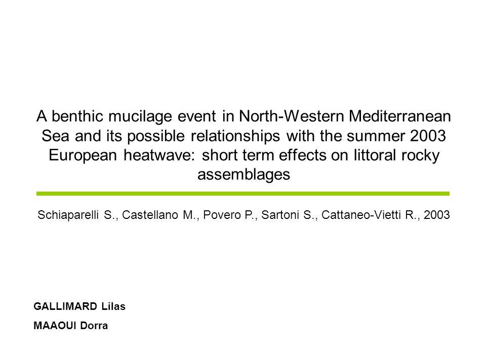 Bloom mucilagineux à Portofino (Italie) Phénomène précédé par une augmentation de la température en Europe (2003) Quel est limpact présumé de laugmentation de la température de leau sur les organismes benthiques.