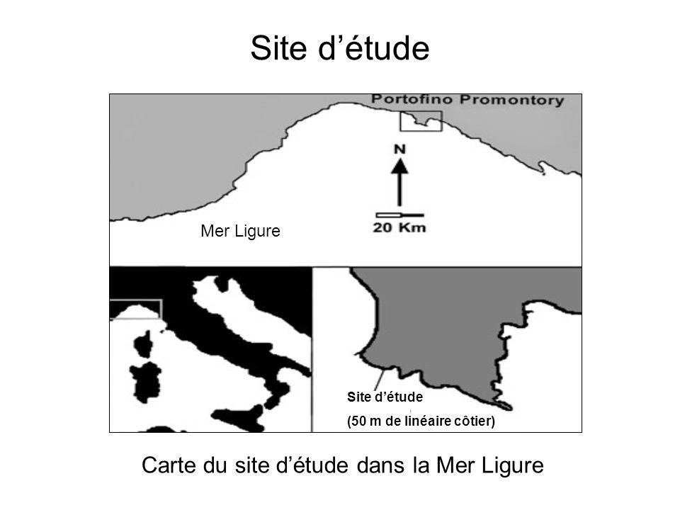 Les mucilages : cas particulier de la Méditerranée .