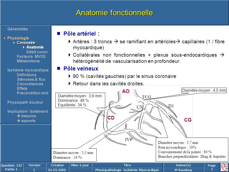 Page 3 Question 132 Partie 1 VersionCréationMise à jourTitreAuteur(s) 101.03.2005Physiopathologie Ischémie MyocardiqueM Baudouy Anatomie fonctionnelle