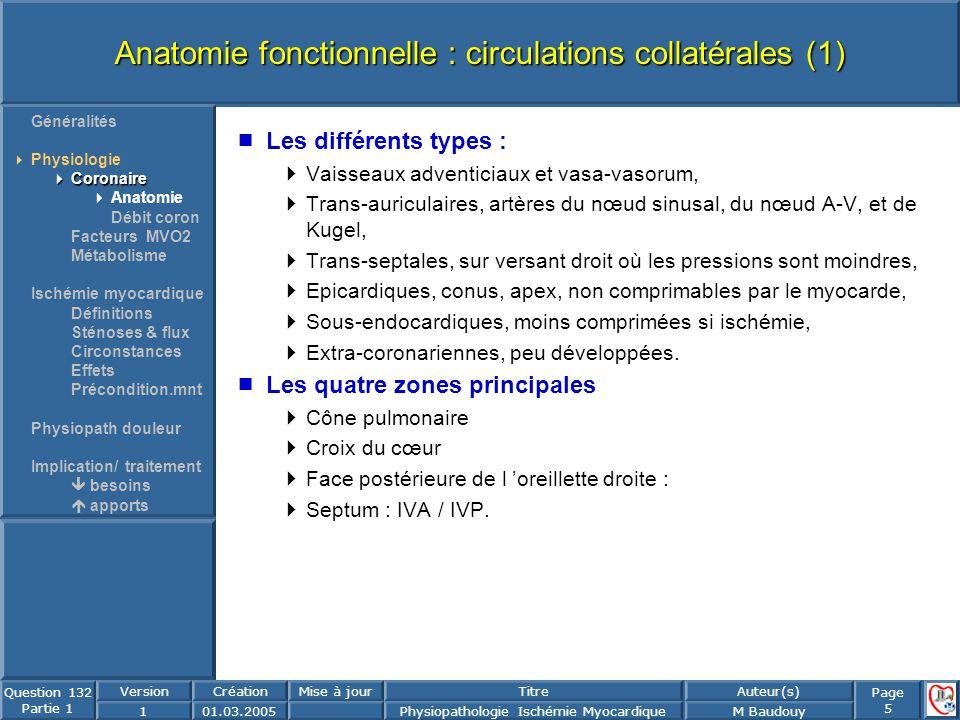 Page 5 Question 132 Partie 1 VersionCréationMise à jourTitreAuteur(s) 101.03.2005Physiopathologie Ischémie MyocardiqueM Baudouy Anatomie fonctionnelle