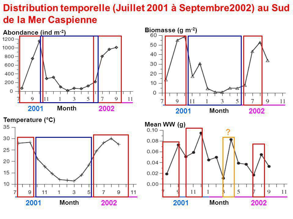 Distribution temporelle (Juillet 2001 à Septembre2002) au Sud de la Mer Caspienne Month 20012002 2001 Month 20022001 Month Biomasse (g m -2 ) Abondance (ind m -2 ) Temperature (°C) 20022001 Month Mean WW (g) ?