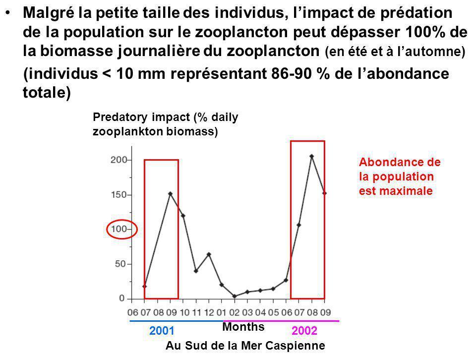 Malgré la petite taille des individus, limpact de prédation de la population sur le zooplancton peut dépasser 100% de la biomasse journalière du zooplancton (en été et à lautomne) (individus < 10 mm représentant 86-90 % de labondance totale) Months 20012002 Au Sud de la Mer Caspienne Predatory impact (% daily zooplankton biomass) Abondance de la population est maximale