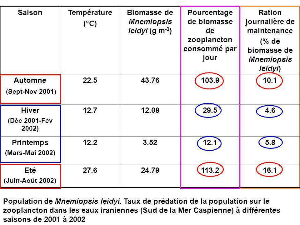 SaisonTempérature (°C) Biomasse de Mnemiopsis leidyi (g m -3 ) Pourcentage de biomasse de zooplancton consommé par jour Ration journalière de maintenance (% de biomasse de Mnemiopsis leidyi) Automne (Sept-Nov 2001) 22.543.76103.910.1 Hiver (Déc 2001-Fév 2002) 12.712.0829.54.6 Printemps (Mars-Mai 2002) 12.23.5212.15.8 Eté (Juin-Août 2002) 27.624.79113.216.1 Population de Mnemiopsis leidyi.