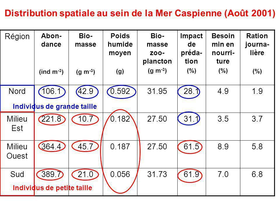 Distribution spatiale au sein de la Mer Caspienne (Août 2001) Région Abon- dance (ind m -3 ) Bio- masse (g m -3 ) Poids humide moyen (g) Bio- masse zoo- plancton (g m -3 ) Impact de préda- tion (%) Besoin min en nourri- ture (%) Ration journa- lière (%) Nord106.142.90.59231.9528.14.91.9 Milieu Est 221.810.70.18227.5031.13.53.7 Milieu Ouest 364.445.70.18727.5061.58.95.8 Sud389.721.00.05631.7361.97.06.8 Individus de grande taille Individus de petite taille