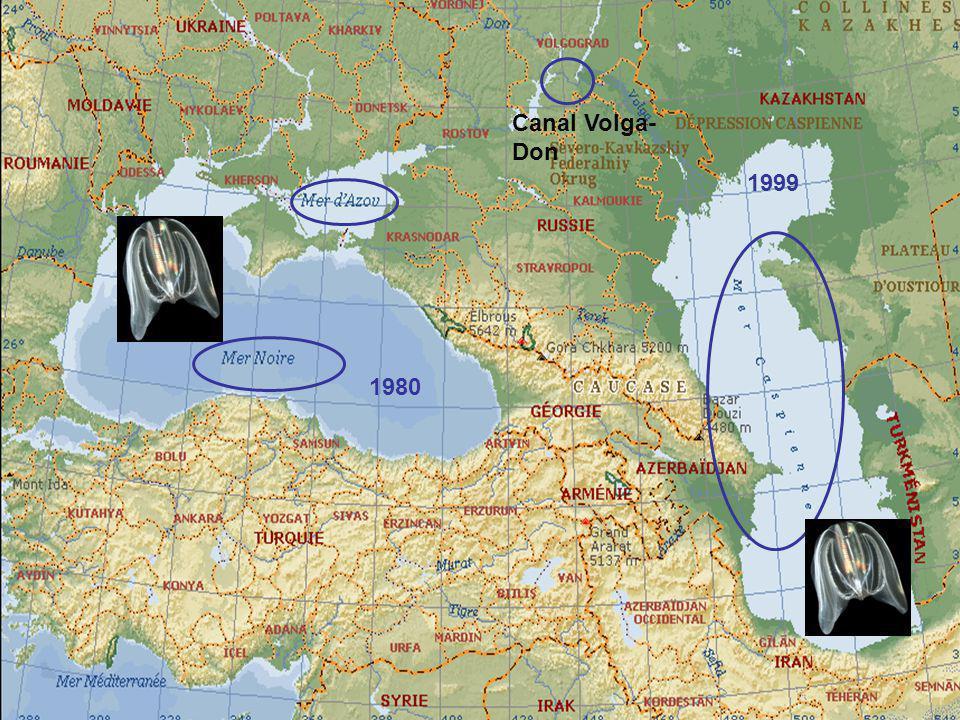 Canal Volga- Don 1999 1980