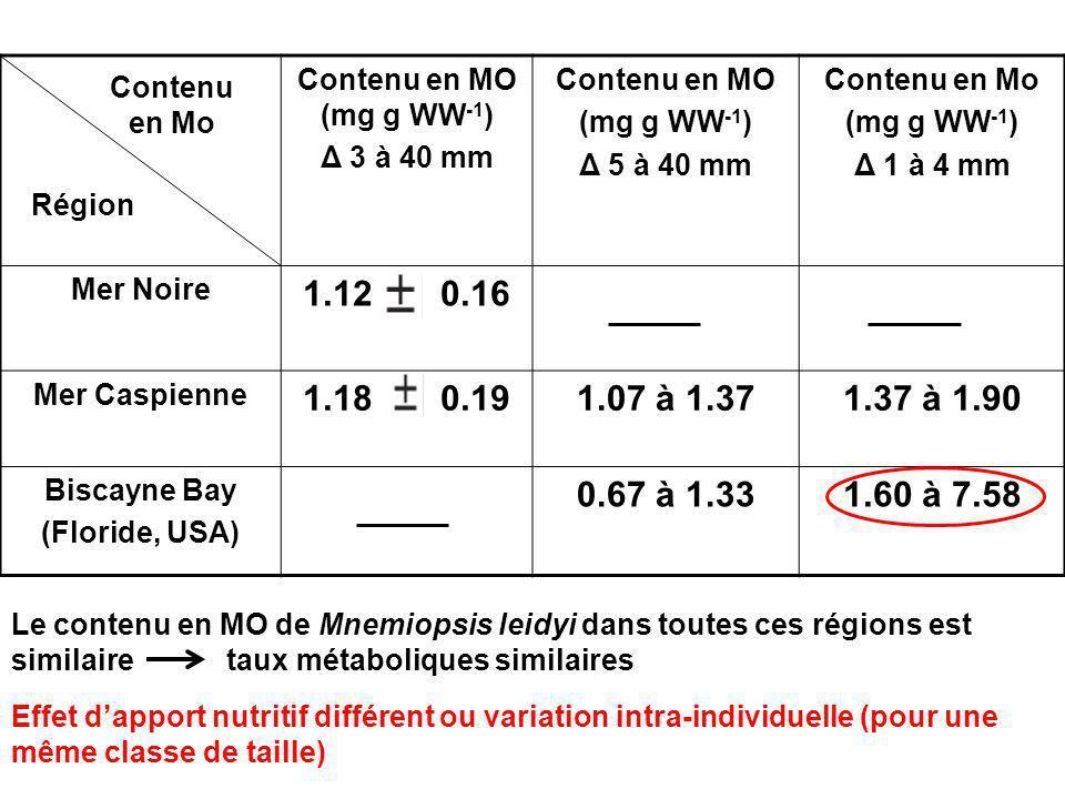 Contenu en MO (mg g WW -1 ) Δ 3 à 40 mm Contenu en MO (mg g WW -1 ) Δ 5 à 40 mm Contenu en Mo (mg g WW -1 ) Δ 1 à 4 mm Mer Noire 1.12 0.16 Mer Caspienne 1.18 0.191.07 à 1.371.37 à 1.90 Biscayne Bay (Floride, USA) 0.67 à 1.331.60 à 7.58 Région Contenu en Mo Le contenu en MO de Mnemiopsis leidyi dans toutes ces régions est similaire taux métaboliques similaires Effet dapport nutritif différent ou variation intra-individuelle (pour une même classe de taille)