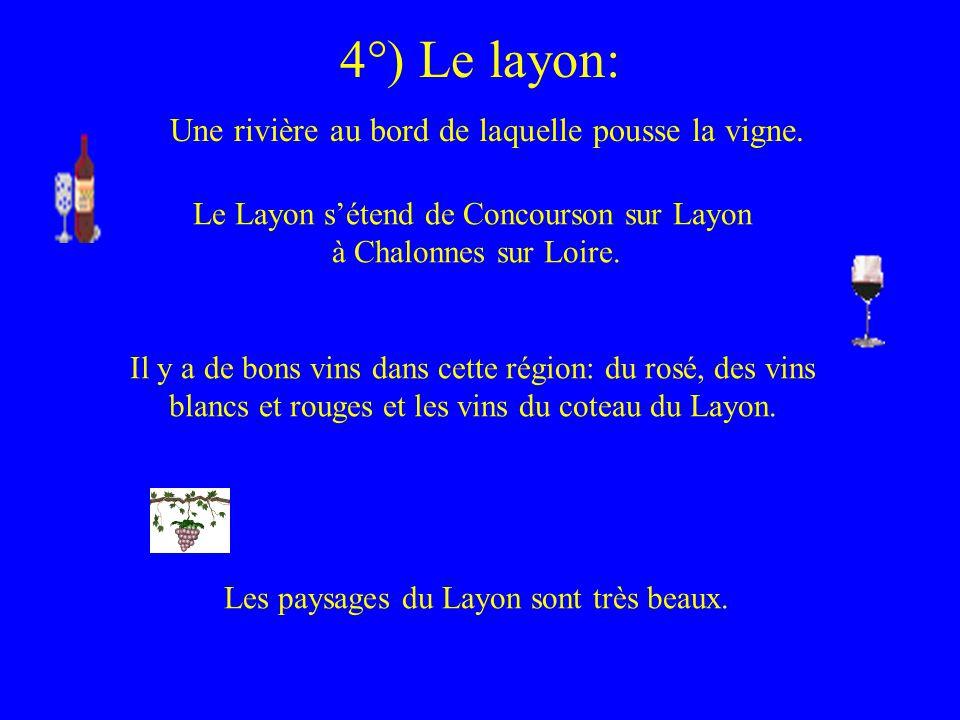 4°) Le layon: Une rivière au bord de laquelle pousse la vigne. Le Layon sétend de Concourson sur Layon à Chalonnes sur Loire. Il y a de bons vins dans
