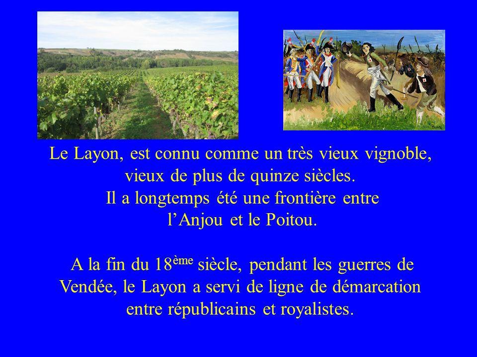 Le Layon, est connu comme un très vieux vignoble, vieux de plus de quinze siècles. Il a longtemps été une frontière entre lAnjou et le Poitou. A la fi