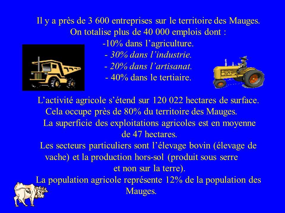 Il y a près de 3 600 entreprises sur le territoire des Mauges. On totalise plus de 40 000 emplois dont : -10% dans lagriculture. - 30% dans lindustrie
