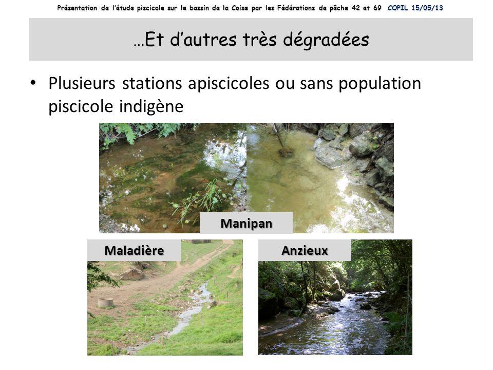 …Et dautres très dégradées Plusieurs stations apiscicoles ou sans population piscicole indigène Manipan AnzieuxMaladière Présentation de létude piscic