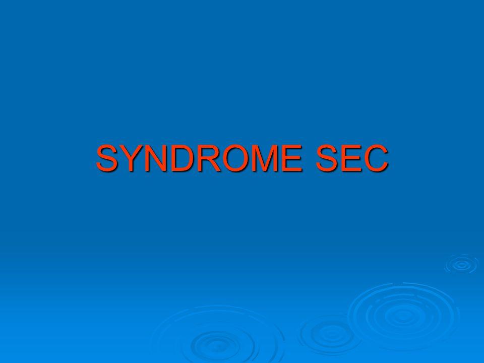 SYNDROME SEC