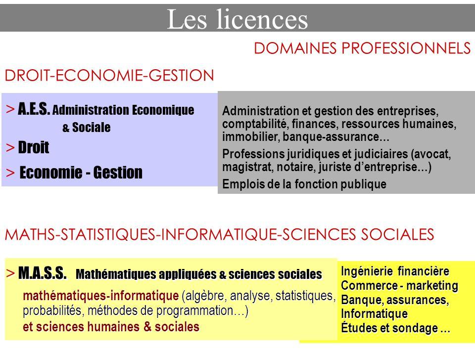 Les licences DOMAINES PROFESSIONNELS MATHS-STATISTIQUES-INFORMATIQUE-SCIENCES SOCIALES > M.A.S.S. Mathématiques appliquées & sciences sociales mathéma