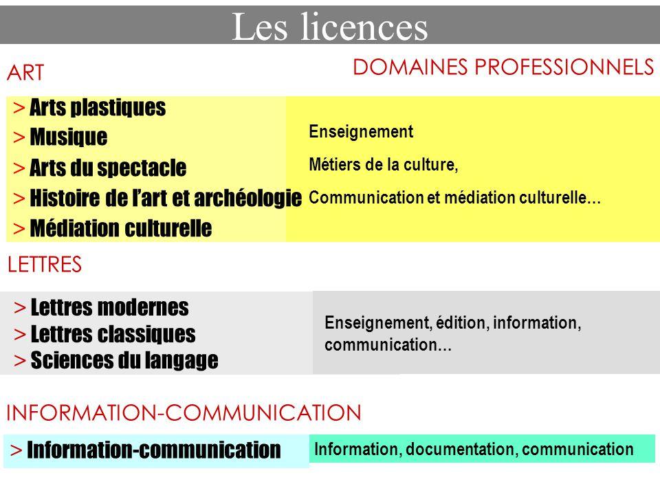 Les licences DOMAINES PROFESSIONNELS > Arts plastiques > Musique > Arts du spectacle > Histoire de lart et archéologie > Médiation culturelle Enseigne