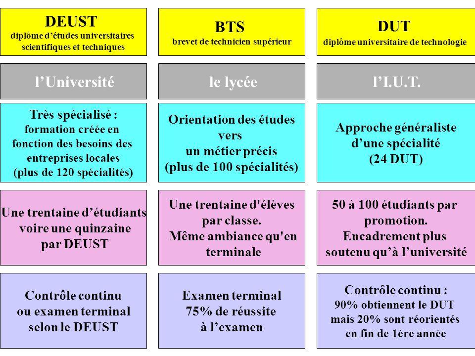 Orientation des études vers un métier précis (plus de 100 spécialités) Approche généraliste dune spécialité (24 DUT) Une trentaine d élèves par classe.