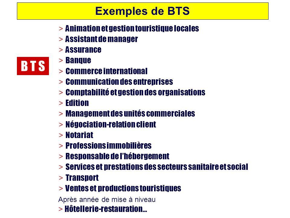 B T S Exemples de BTS Après année de mise à niveau > Hôtellerie-restauration… > Animation et gestion touristique locales > Assistant de manager > Assu