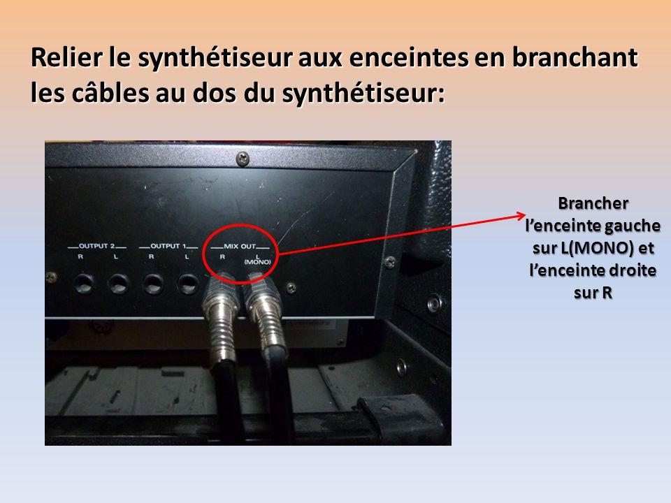 Relier le synthétiseur aux enceintes en branchant les câbles au dos du synthétiseur: Brancher lenceinte gauche sur L(MONO) et lenceinte droite sur R