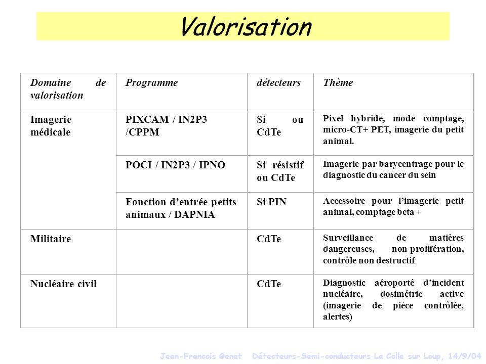 Valorisation Domaine de valorisation ProgrammedétecteursThème Imagerie médicale PIXCAM / IN2P3 /CPPM Si ou CdTe Pixel hybride, mode comptage, micro-CT+ PET, imagerie du petit animal.