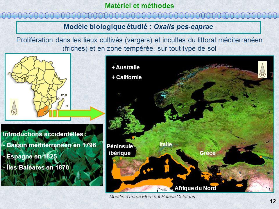 Péninsule ibérique Italie Grèce Afrique du Nord Matériel et méthodes Modèle biologique étudié : Oxalis pes-caprae Prolifération dans les lieux cultivé