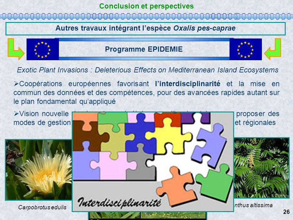 Conclusion et perspectives Autres travaux intégrant lespèce Oxalis pes-caprae Coopérations européennes favorisant linterdisciplinarité et la mise en c