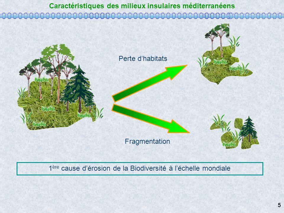 Caractéristiques des milieux insulaires méditerranéens Perte dhabitats Fragmentation 5 1 ère cause dérosion de la Biodiversité à léchelle mondiale