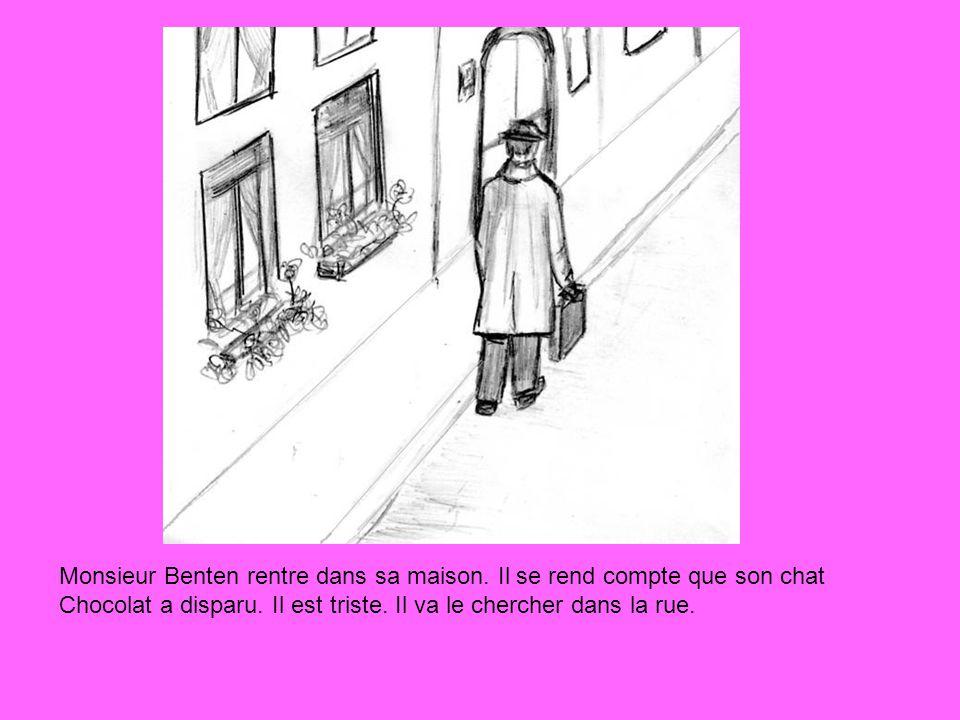 Monsieur Benten rentre dans sa maison. Il se rend compte que son chat Chocolat a disparu. Il est triste. Il va le chercher dans la rue.
