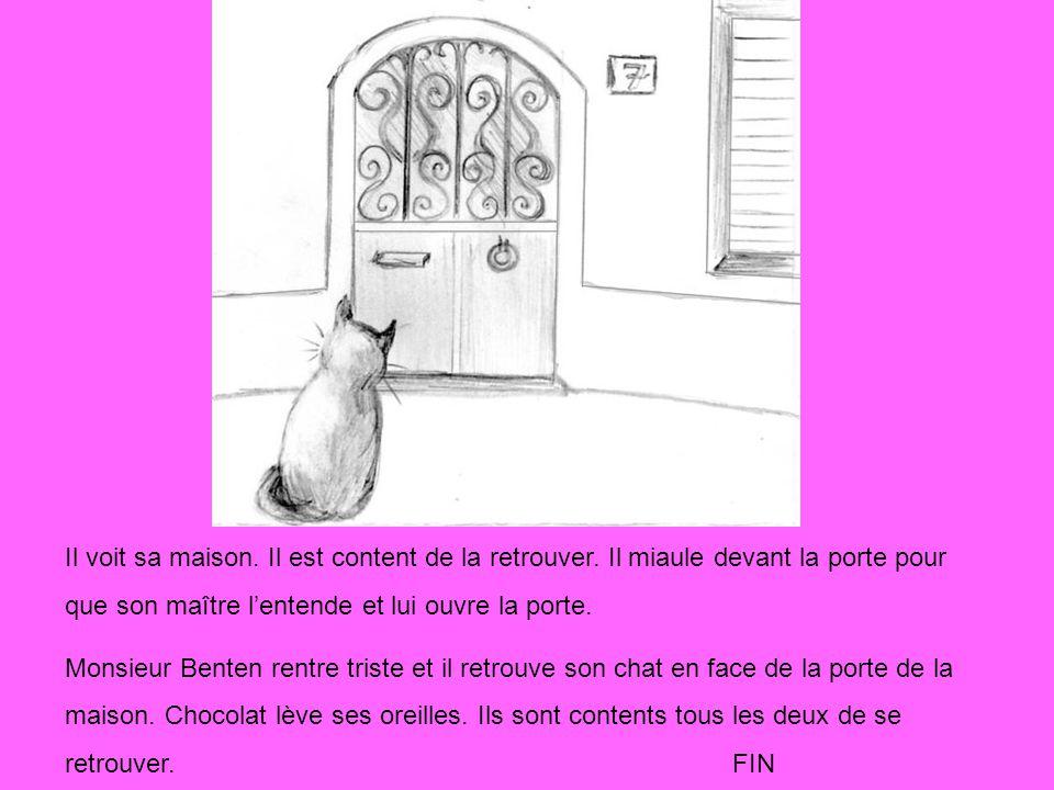 Il voit sa maison. Il est content de la retrouver. Il miaule devant la porte pour que son maître lentende et lui ouvre la porte. Monsieur Benten rentr