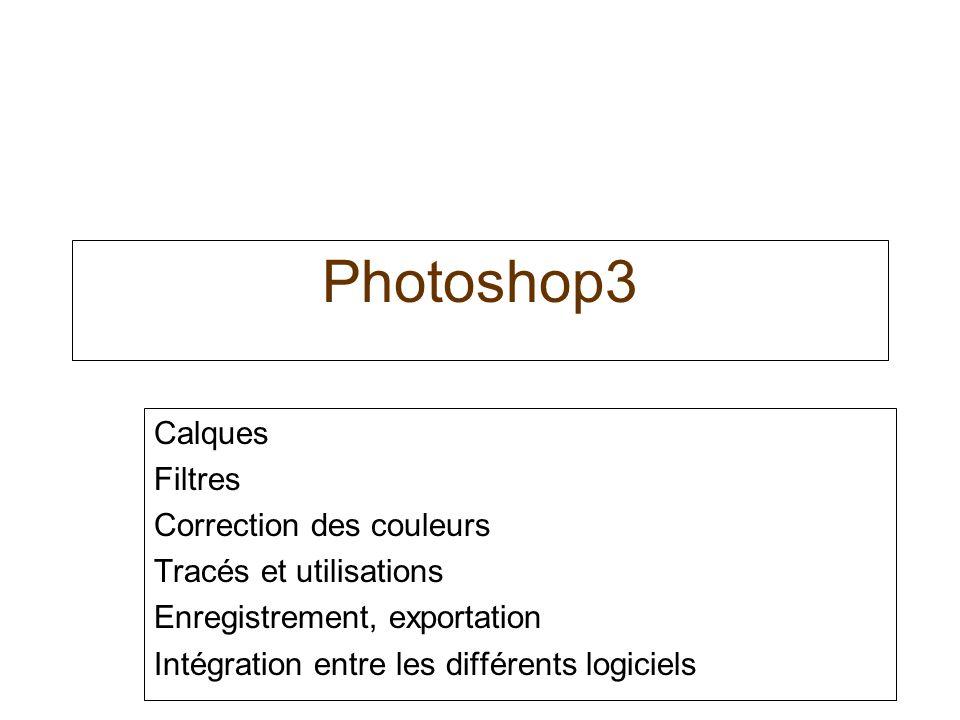 Photoshop3 Calques Filtres Correction des couleurs Tracés et utilisations Enregistrement, exportation Intégration entre les différents logiciels
