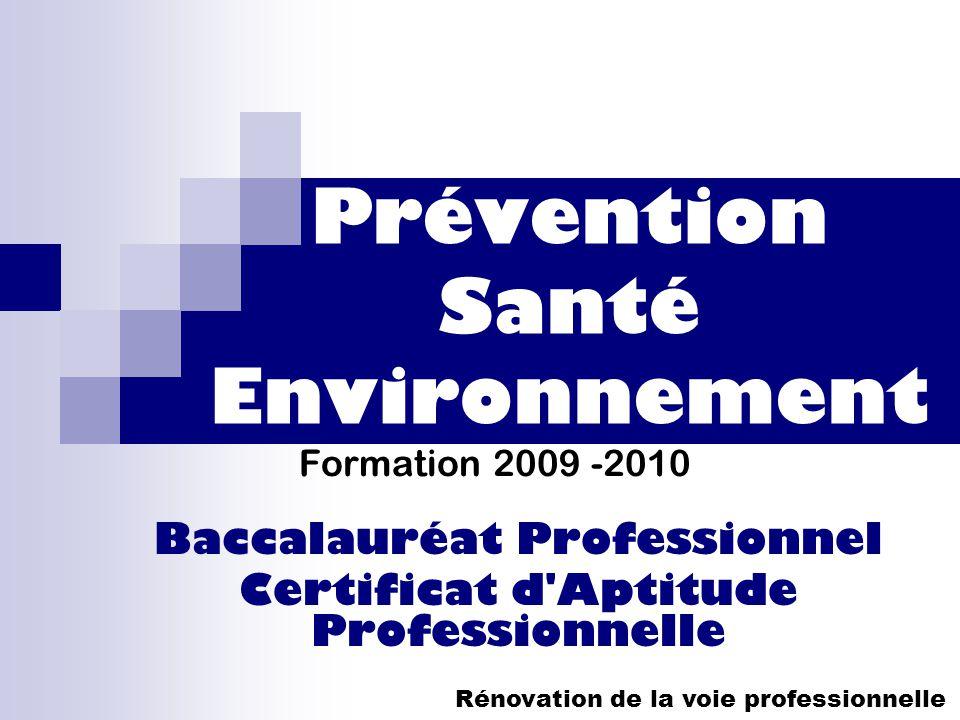 Prévention Santé Environnement Formation 2009 -2010 Baccalauréat Professionnel Certificat d'Aptitude Professionnelle Rénovation de la voie professionn