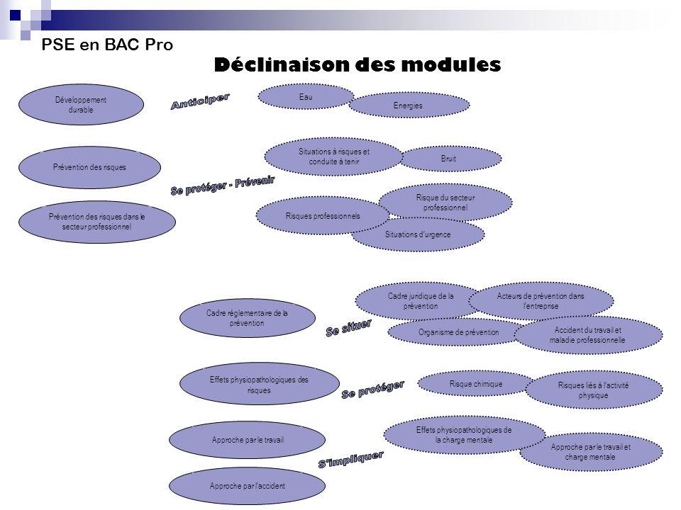 PSE en BAC Pro Déclinaison des modules Développement durable Eau Energies Prévention des risques Bruit Situations à risques et conduite à tenir Préven