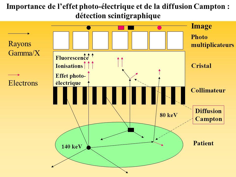 Rayons Gamma/X Electrons Diffusion Campton Ionisations 140 keV 80 keV Effet photo- électrique Cristal Photo multiplicateurs Patient Importance de leffet photo-électrique et de la diffusion Campton : détection scintigraphique Image Collimateur Fluorescence