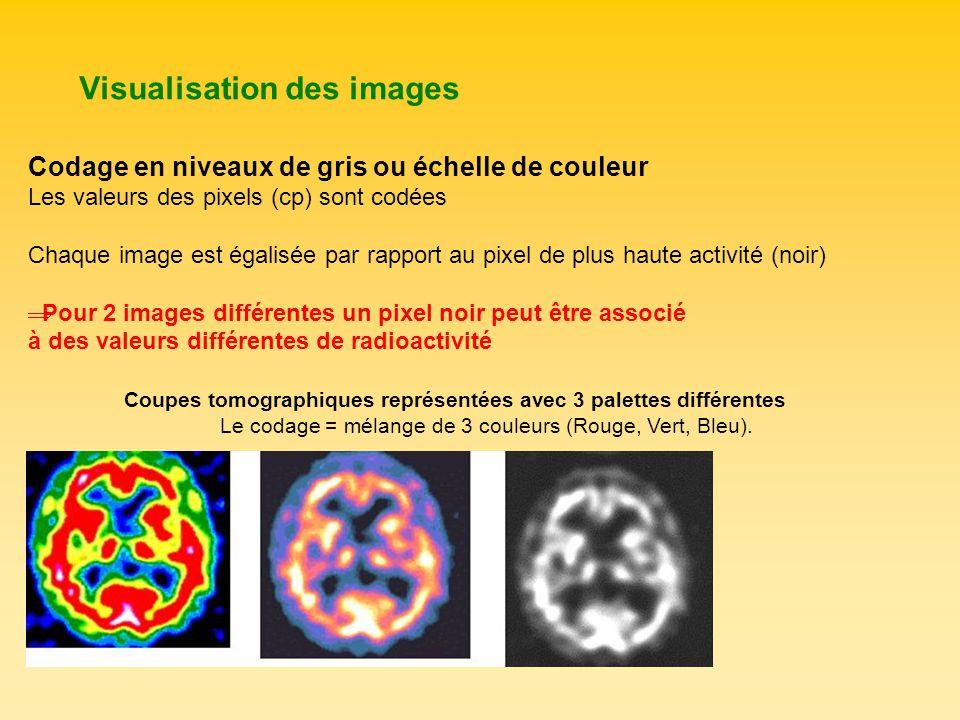 Visualisation des images Codage en niveaux de gris ou échelle de couleur Les valeurs des pixels (cp) sont codées Chaque image est égalisée par rapport