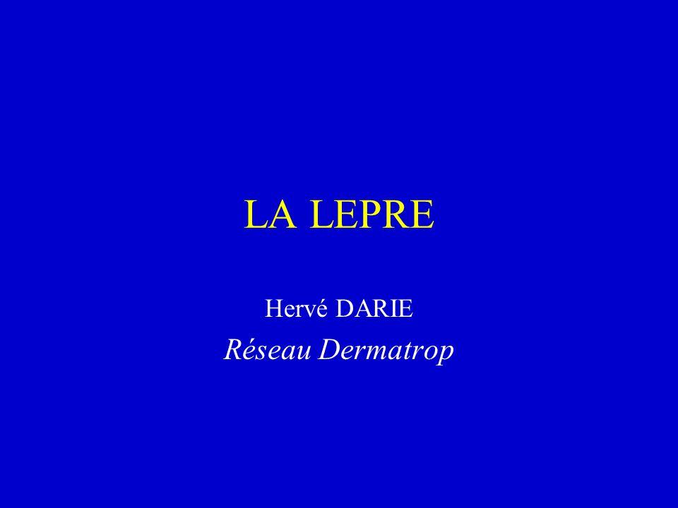 LA LEPRE Hervé DARIE Réseau Dermatrop