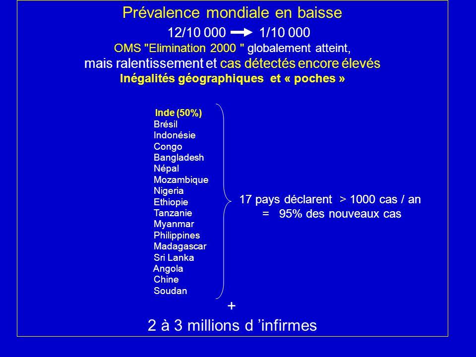 Agent pathogène Mycobacterium leprae ou bacille de Hansen (BH) BAAR (Ziehl Neelsen): rouge, 2 à 5 μ Homogène ou granuleux Isolé ou en globi Mycobactérie à croissance lente (division en 12 jours) Intracellulaire obligatoire Non cultivable in vitro Inoculable: souris, tatou à 9 bandes et primates (thermodépendance) Identification: comportement coussinet plantaire de la souris (10 9 ) 2000 : séquençage du génome : –Gènes non fonctionnels : lenteur multiplication, non cultivable –Perspectives : Détection de résistance aux antibiotiques Tests de diagnostic précoce : PCR, sérologie Vaccin
