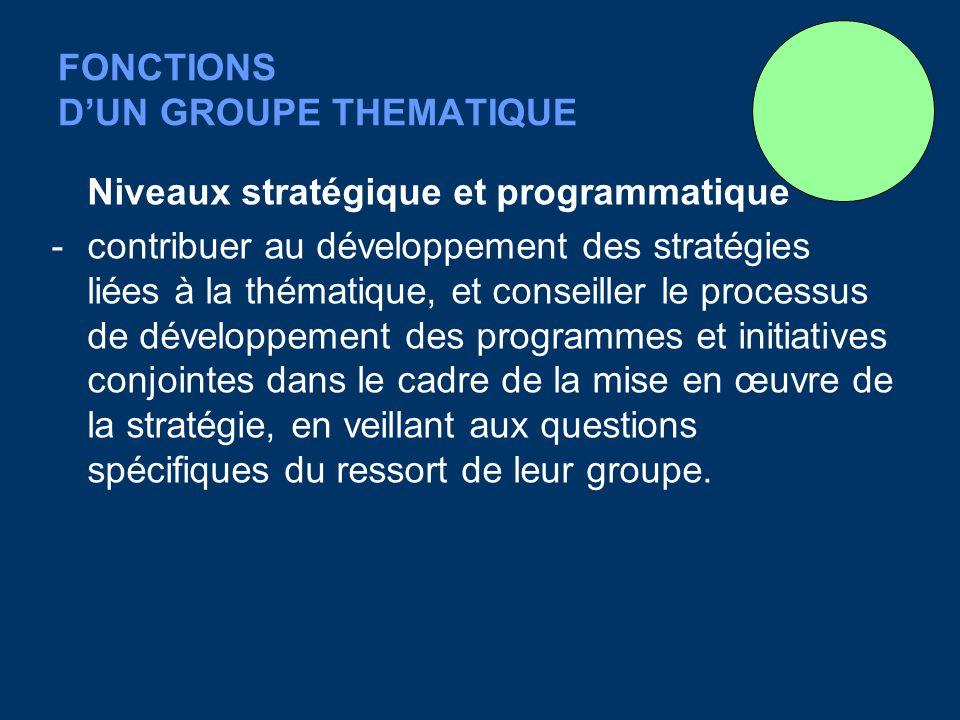 FONCTIONS DUN GROUPE THEMATIQUE Niveaux stratégique et programmatique - contribuer au développement des stratégies liées à la thématique, et conseiller le processus de développement des programmes et initiatives conjointes dans le cadre de la mise en œuvre de la stratégie, en veillant aux questions spécifiques du ressort de leur groupe.