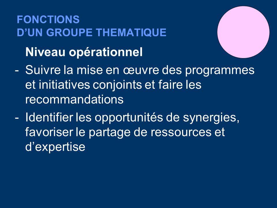 FONCTIONS DUN GROUPE THEMATIQUE Niveau opérationnel -Suivre la mise en œuvre des programmes et initiatives conjoints et faire les recommandations -Ide