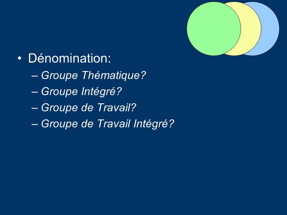 Dénomination: –Groupe Thématique? –Groupe Intégré? –Groupe de Travail? –Groupe de Travail Intégré?