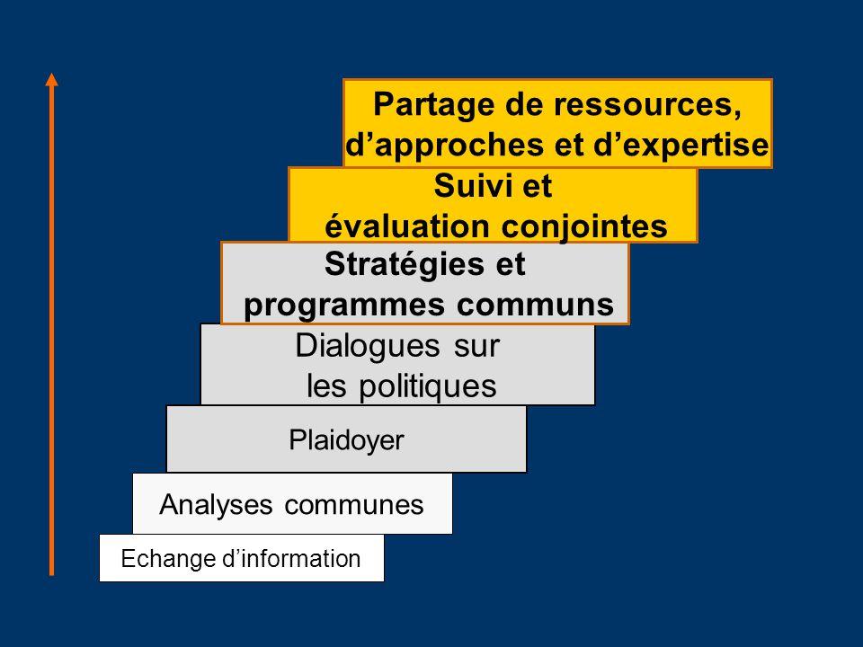 Echange dinformation Analyses communes Plaidoyer Dialogues sur les politiques Stratégies et programmes communs Suivi et évaluation conjointes Partage de ressources, dapproches et dexpertise