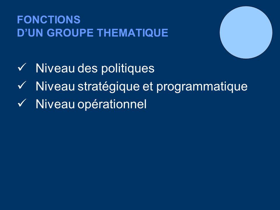 FONCTIONS DUN GROUPE THEMATIQUE Niveau des politiques Niveau stratégique et programmatique Niveau opérationnel