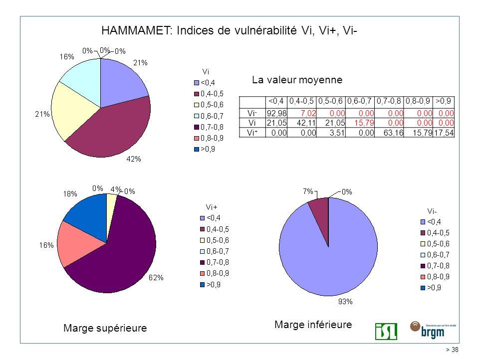 > 38 HAMMAMET: Indices de vulnérabilité Vi, Vi+, Vi- <0,40,4-0,50,5-0,60,6-0,70,7-0,80,8-0,9>0,9 Vi - 92,987,020,00 Vi21,0542,1121,0515,790,00 Vi + 0,00 3,510,0063,1615,7917,54 La valeur moyenne Marge inférieure Marge supérieure