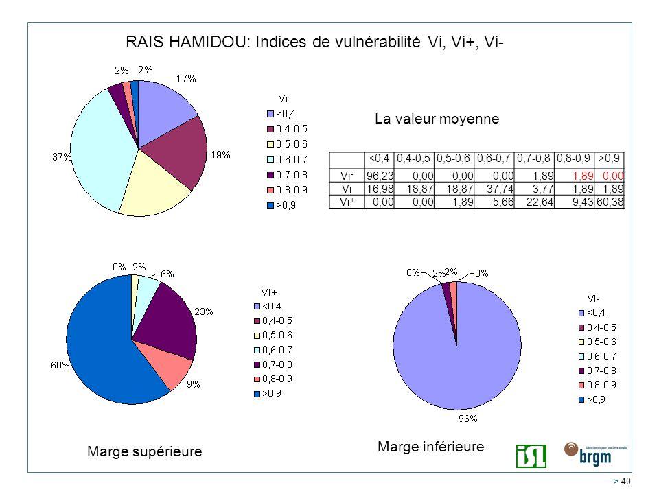 > 40 RAIS HAMIDOU: Indices de vulnérabilité Vi, Vi+, Vi- <0,40,4-0,50,5-0,60,6-0,70,7-0,80,8-0,9>0,9 Vi - 96,230,00 1,89 0,00 Vi16,9818,87 37,743,771,89 Vi + 0,00 1,895,6622,649,4360,38 La valeur moyenne Marge inférieure Marge supérieure