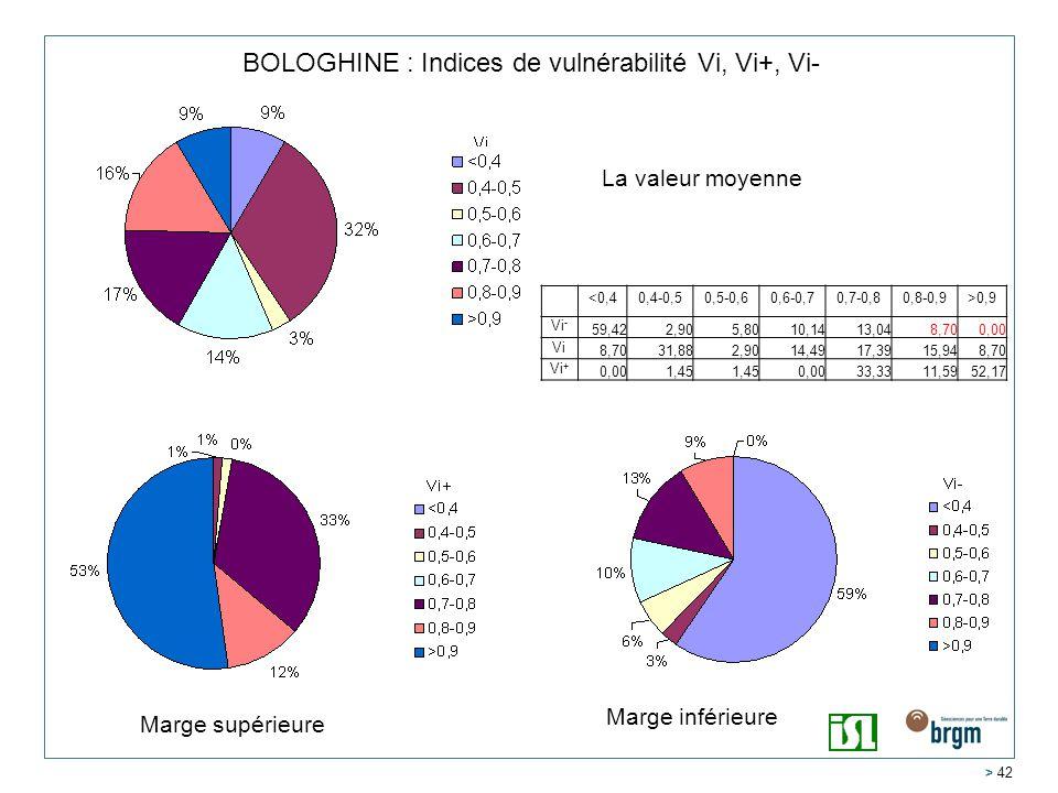 > 42 BOLOGHINE : Indices de vulnérabilité Vi, Vi+, Vi- <0,40,4-0,50,5-0,60,6-0,70,7-0,80,8-0,9>0,9 Vi - 59,422,905,8010,1413,048,700,00 Vi 8,7031,882,9014,4917,3915,948,70 Vi + 0,001,45 0,0033,3311,5952,17 La valeur moyenne Marge inférieure Marge supérieure
