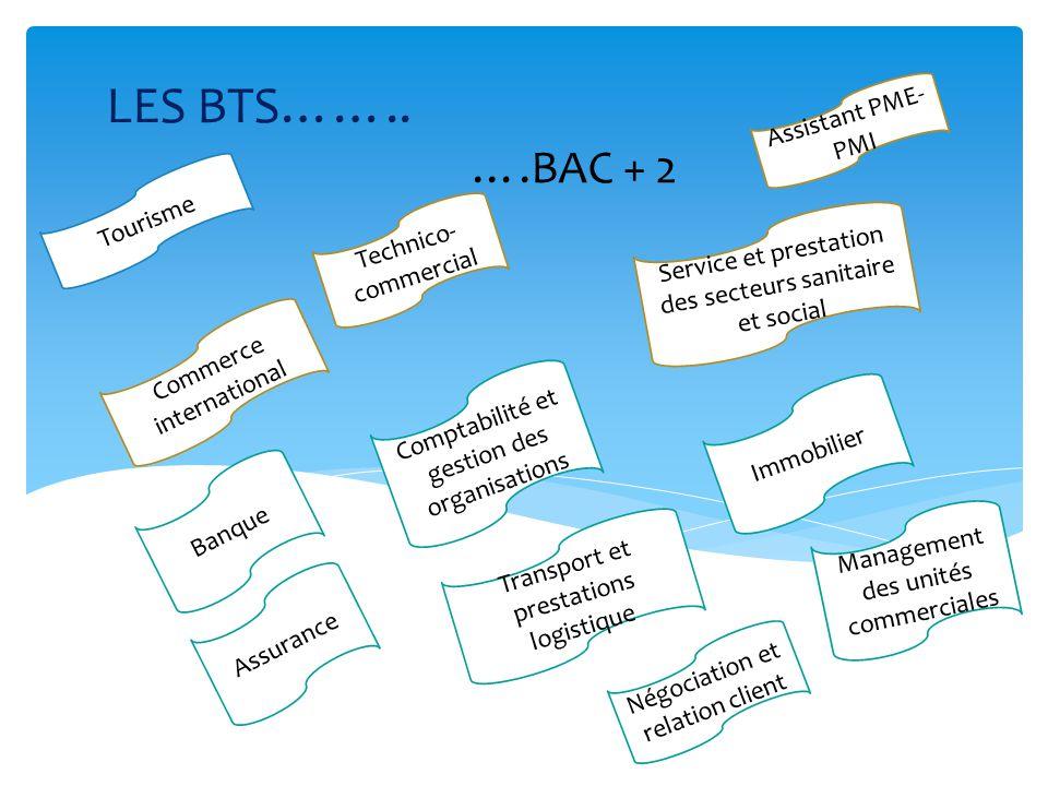 Commerce international Tourisme Technico- commercial Assistant PME- PMI Service et prestation des secteurs sanitaire et social Comptabilité et gestion