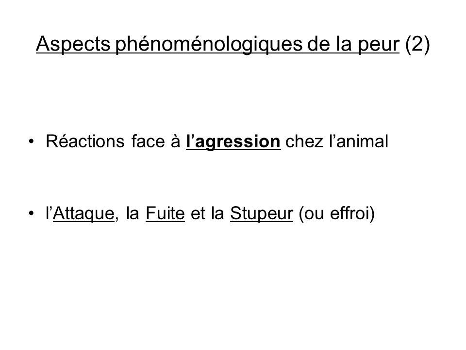 Aspects phénoménologiques de la peur (2) Réactions face à lagression chez lanimal lAttaque, la Fuite et la Stupeur (ou effroi)