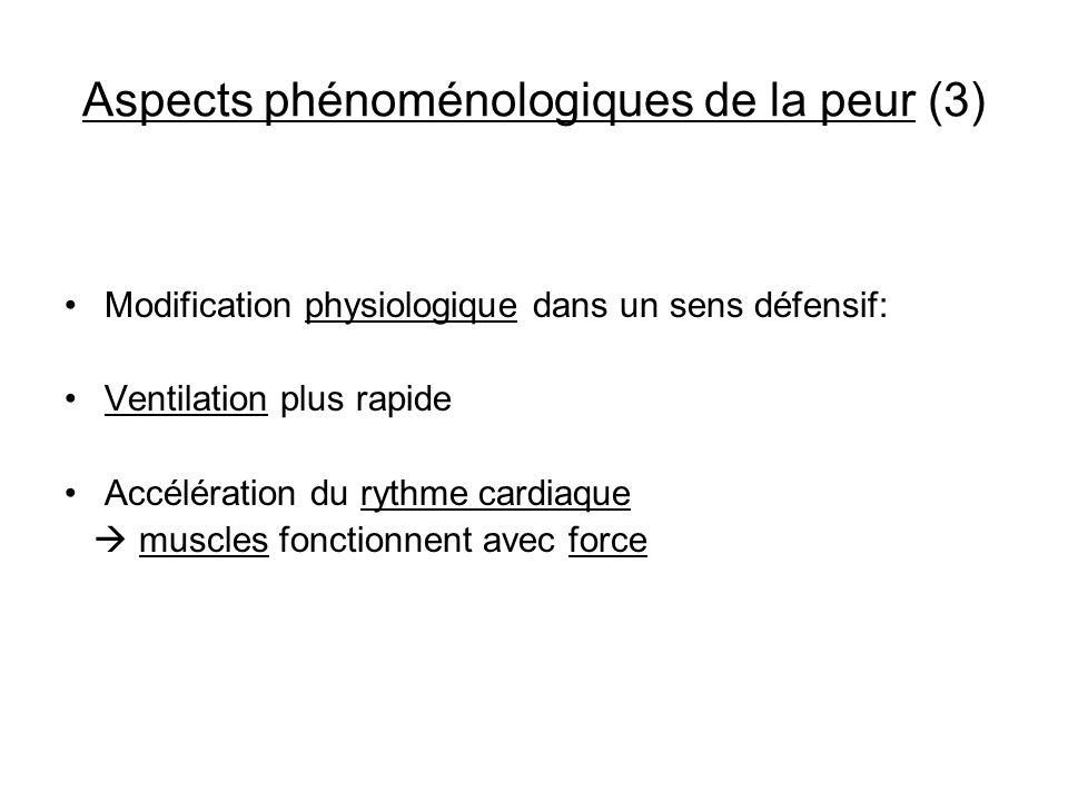 Aspects phénoménologiques de la peur (3) Modification physiologique dans un sens défensif: Ventilation plus rapide Accélération du rythme cardiaque mu
