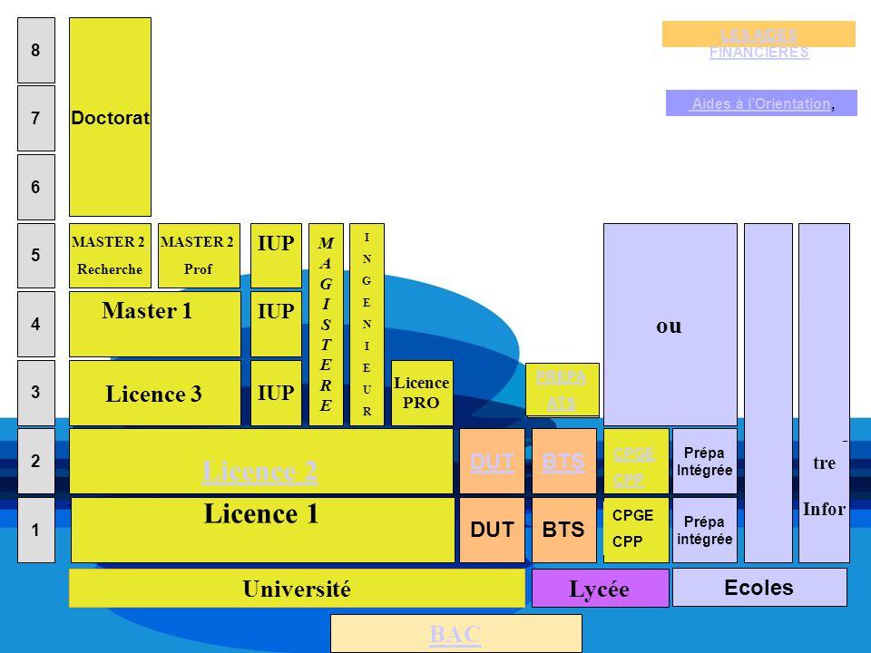 MAGISTEREMAGISTERE 8 7 6 5 2 1 3 4 BAC Ecoles BTS Lycée Université DUT IUP DUT IUP Licence 1 Licence 2 Licence 3 Master 1 MASTER 2 Recherche MASTER 2