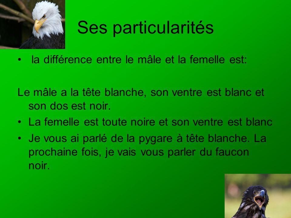 Ses particularités la différence entre le mâle et la femelle est: Le mâle a la tête blanche, son ventre est blanc et son dos est noir. La femelle est
