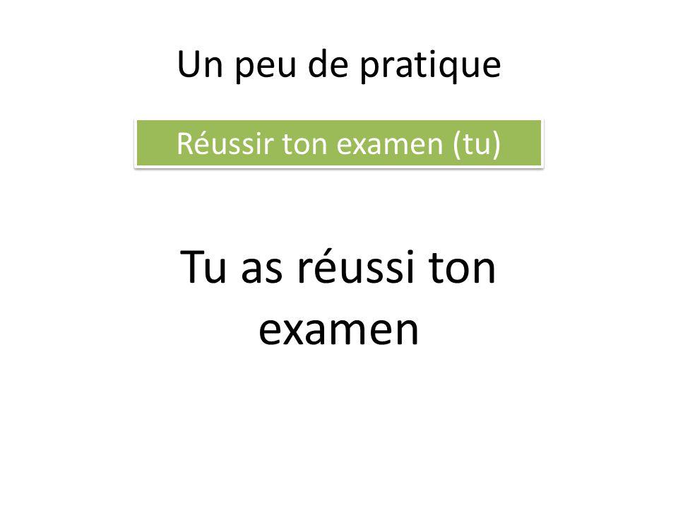 Un peu de pratique Réussir ton examen (tu) Tu as réussi ton examen