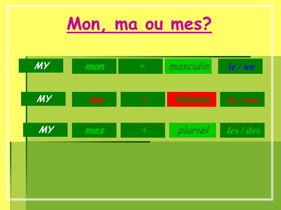 Mon, ma ou mes? masculin féminin pluriel mon + ma + mes le / un MY + la / une les / des