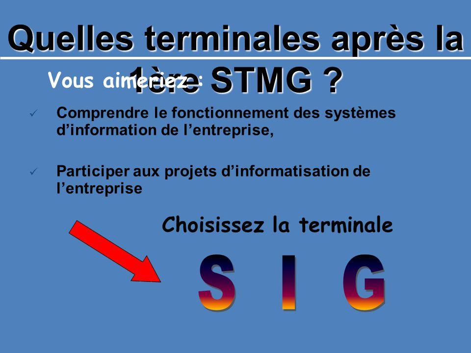 Quelles terminales après la 1ère STMG ? Vous aimeriez : Comprendre le fonctionnement des systèmes dinformation de lentreprise, Participer aux projets